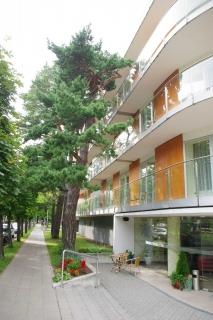 """Apartments for rent in Palanga """"Jurgita"""""""